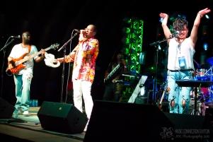 D Funk All Stars - Miami Valley Music Fest 2015-109