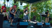 Elementree Livity Project - Miami Valley Music Fest 2015-354