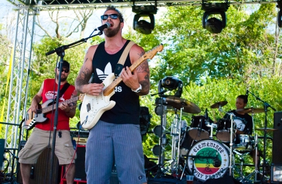 Elementree Livity Project - Miami Valley Music Fest 2015-356