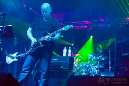 Signs of Life - Miami Valley Music Fest 2015-221