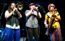 The Almighty Get Down- Miami Valley Music Fest 2015-594