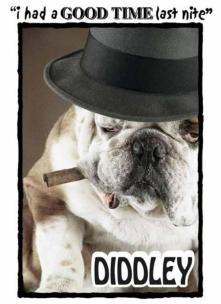 diddley dog shirt