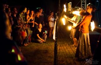 Finnigan-Denson Project - 2016 Miami Valley Music Fest-0271